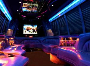 18 passenger party bus rental Louisburg