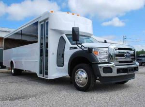 22 Passenger party bus rental Blands