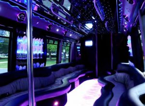 22 people party bus West Raleigh
