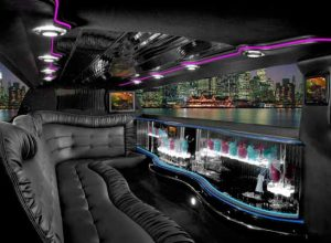 Chrysler 300 limo interior Millbrook