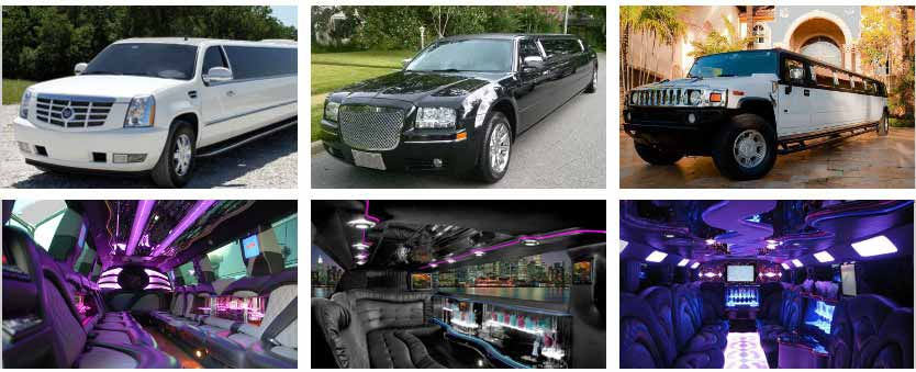 Prom & Homecoming Party Bus Rental Raleigh